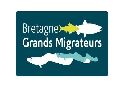 Bretagne Grands Migrateurs (BGM)